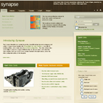Synapse-Template-Screenshots